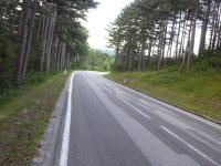 Straße über den Hart